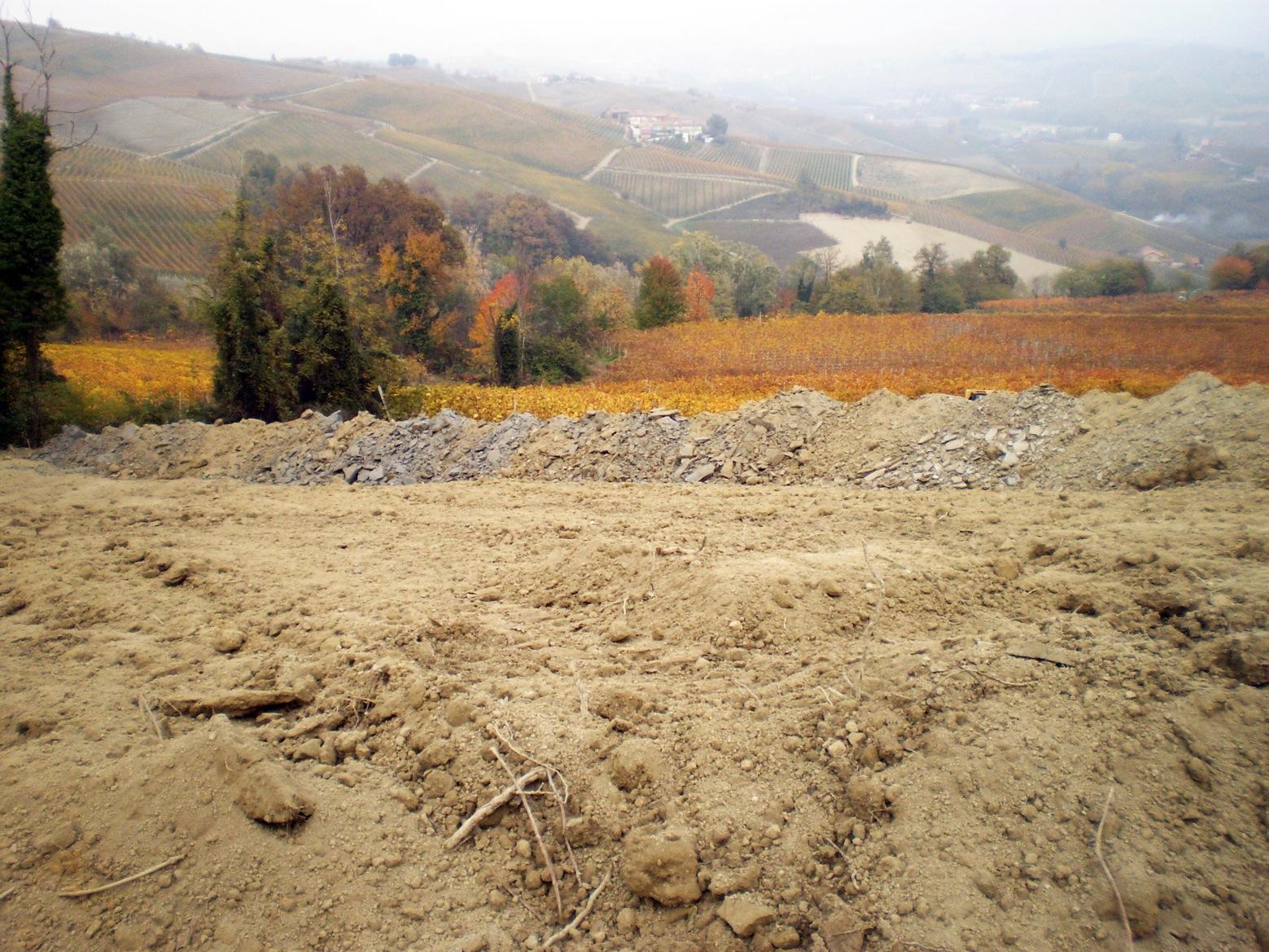 Lo scasso totale della vecchia vigna in località San Pietro di Barolo, un Menzione Geografica Aggiuntiva per la coltivazione di Nebbiolo da Barolo