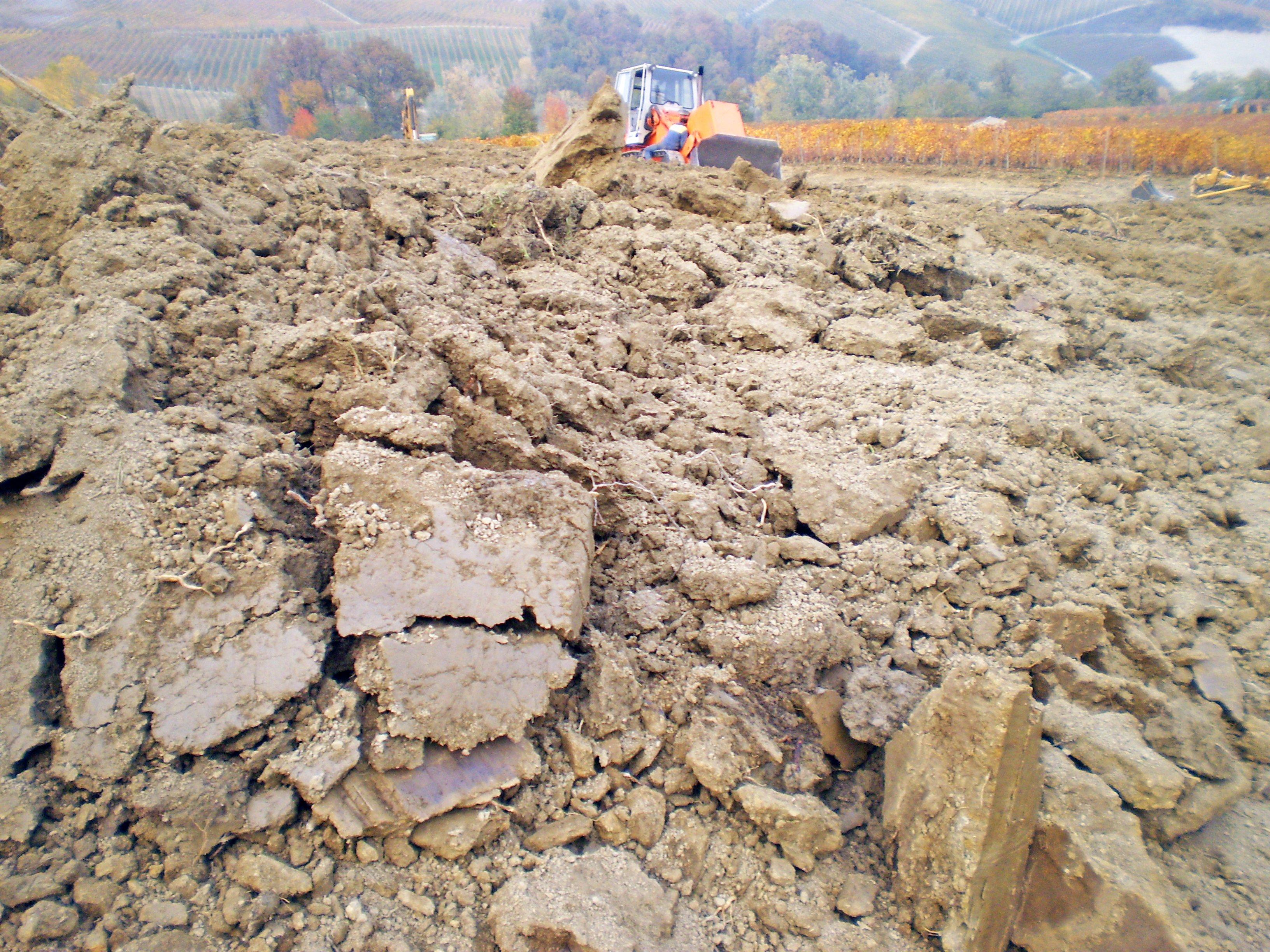Le zolle del terreno cambiano di colore in relazione alla componente più calcarea o argillosa